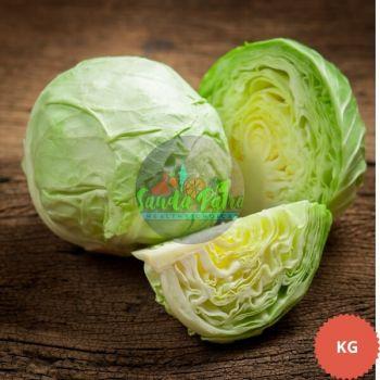 Cabbage (Bandha Kobi), PC