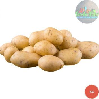 SP Potato (Aloo) , 1kg